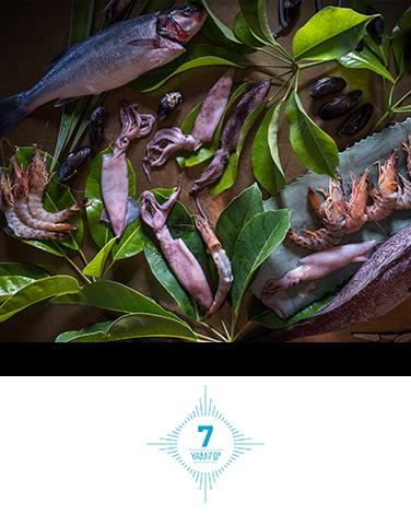 מסעדת ים 7 בהרצליה מסעדת דגים ופירות ים